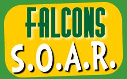Soaring Falcons