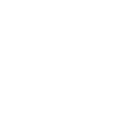 An icon of a military rank