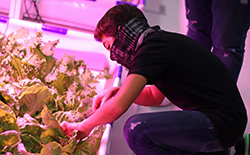 A middle school student farms in the hydroponics lab